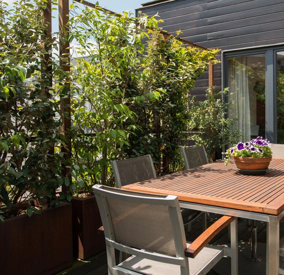 WALFiLii-producten-design-hedges-plantenbak-kopen-op-maat-tuin-terras-hagen-haag-1