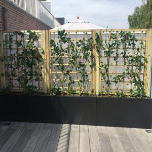 WALFiLii-producten-design-hedges-plantenbak-kopen-op-maat-tuin-terras-hagen-haag-3
