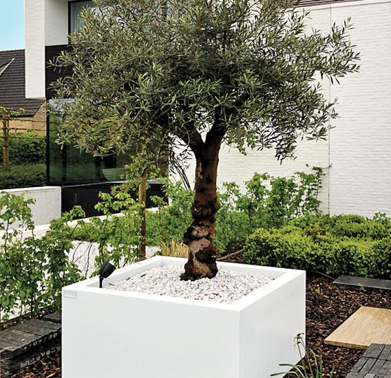 WALFiLii-producten-design-plantenbak-kopen-kleur-op-maat-tuin-terras-14