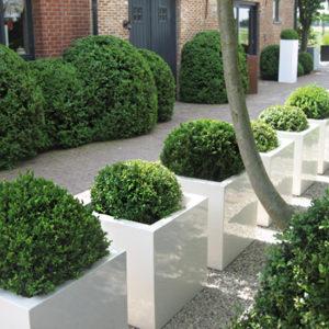 WALFiLii-producten-design-plantenbak-kopen-kleur-op-maat-tuin-terras-6