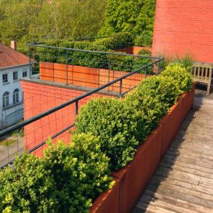 WALFiLii-producten-design-plantenbak-kopen-op-maat-tuin-terras-corten-staal-19