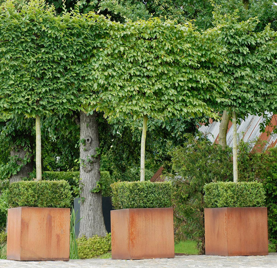 WALFiLii-producten-design-plantenbak-kopen-op-maat-tuin-terras-corten-staal-2