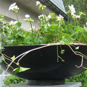 WALFiLii-producten-design-ronde-plantenbak-kopen-staal-op-maat-tuin-terras-20b