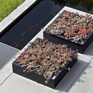 WALFiLii-producten-design-ronde-plantenbak-kopen-staal-op-maat-tuin-terras-22