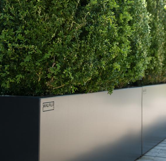 WALFiLii-producten-design-ronde-plantenbak-kopen-staal-op-maat-tuin-terras-26