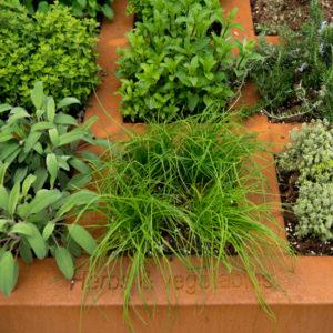 WALFiLii-producten-kruidenbak-design-tuin-terras-1
