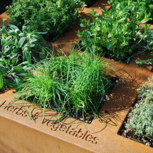 WALFiLii-producten-kruidenbak-design-tuin-terras-5