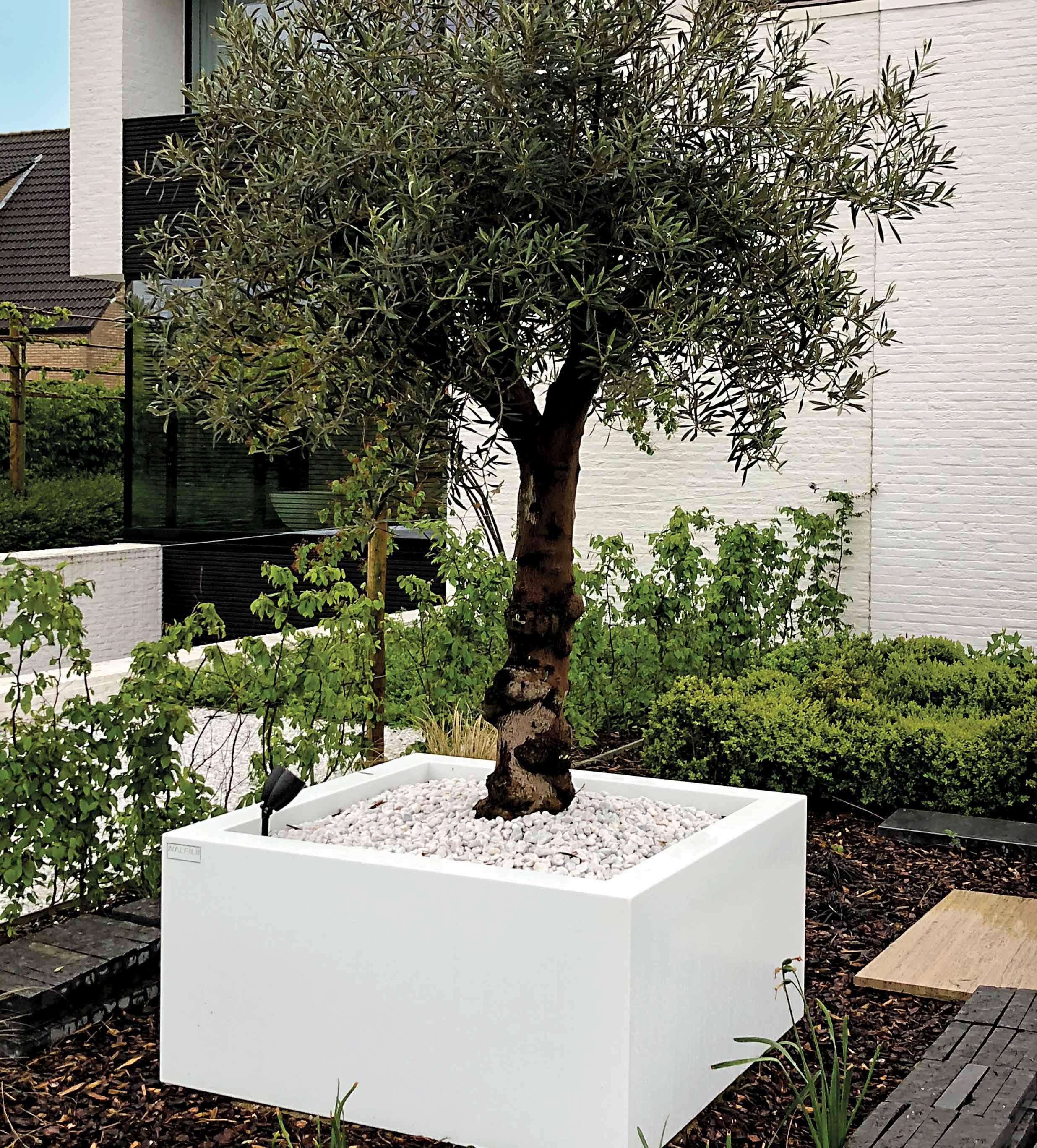 walfilii-realisaties-terras-plantenbakken-staal-design