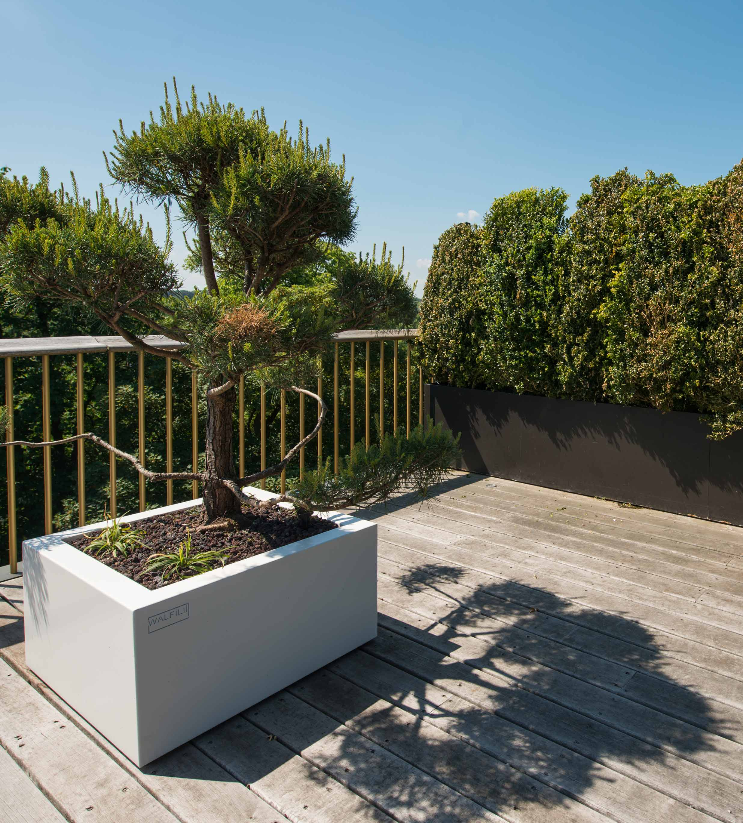 walfilii-realisaties-terras-plantenbakken-staal-design-Brussel-10